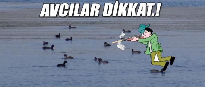 AVCILAR DİKKAT.!