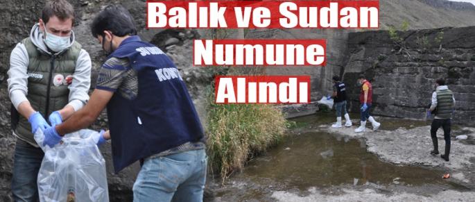 BALIK VE SUDAN NUMUNE ALINDI