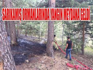 Sarıkamış'ta orman yangını meydana geldi.