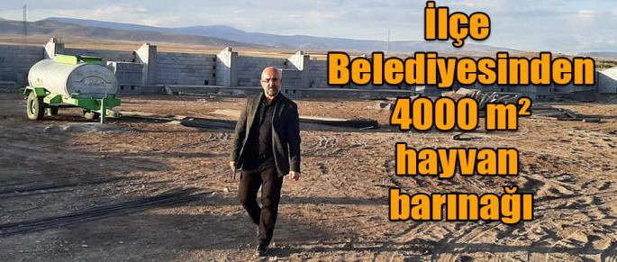 İlçe Belediyesinden 4000 M² Hayvan Barınağı