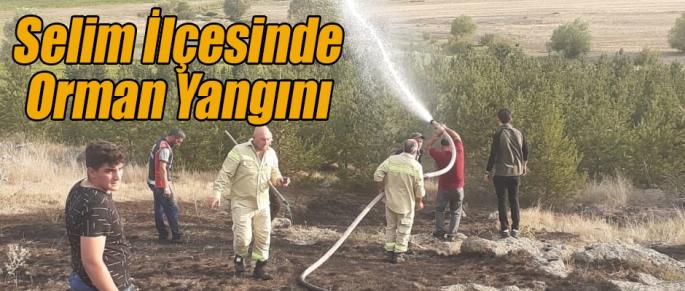 Kars'ın Selim İlçesinde Orman Yangını
