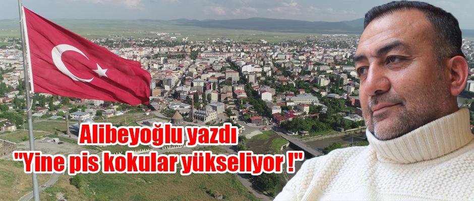 Alibeyoğlu yazdı;