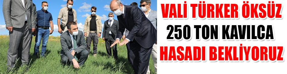 VALİ TÜRKER ÖKSÜZ 250 TON BEKLİYORUZ